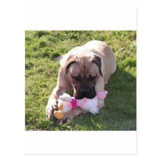Carte Postale Règle anglaise de mastiff