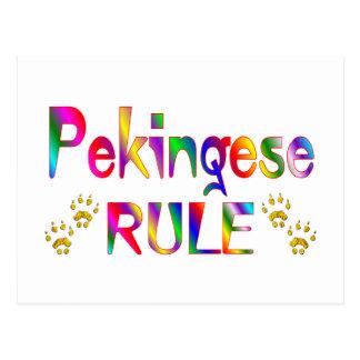 Carte Postale Règle de Pekingese