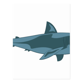 Carte Postale Requin