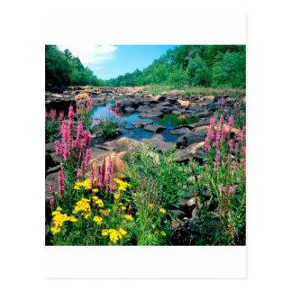 Carte Postale Réservation le Wisconsin de période glaciaire de