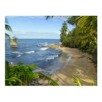 Carte Postale Réserve du Costa Rica, Manzanillo