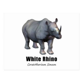 Carte Postale Rhinocéros blanc