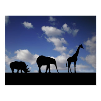 Carte Postale rhinocéros et girafe d'éléphant