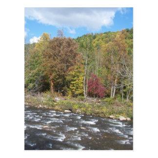 Carte Postale Rivière de cerise pendant l'automne