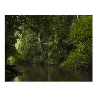 Carte Postale Rivière de Mapari, Mapari Rupununi, Guyane