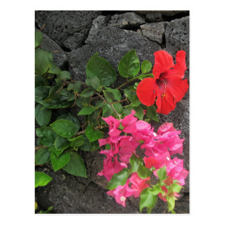 Carte Postale Roche de lave de Lanzarote avec des fleurs