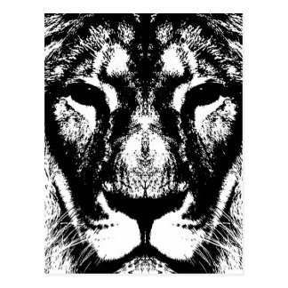 Carte Postale Roi de lion