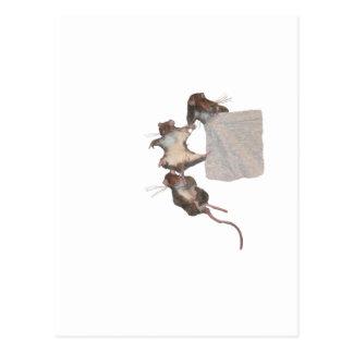 Carte Postale Rongeurs heureux (blancs)