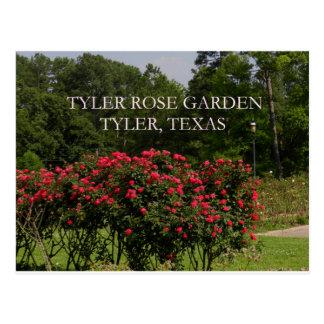 Carte Postale Roseraie de Tyler
