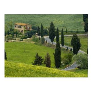 Carte Postale Route de Pienza à Montepulciano, 2