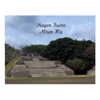 Carte Postale Ruines maya, Altun ha