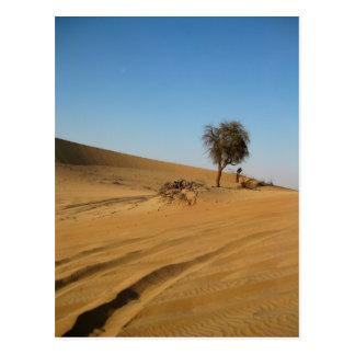 Carte Postale Safari Abu Dhabi de désert