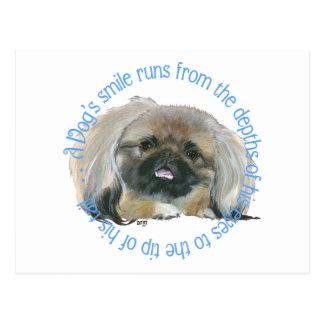 Carte Postale Sagesse de Pekingese - le sourire d'un chien