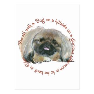 Carte Postale Sagesse de Pekingese - pour se reposer avec un