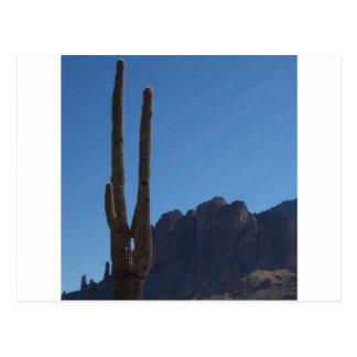 Carte Postale Saguaro contre le ciel bleu et la colline