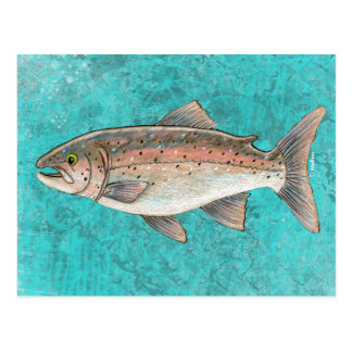 Carte postale saumonée de croquis
