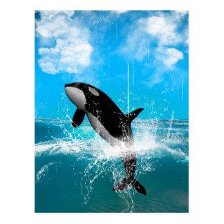 Carte Postale Sauter d'orque