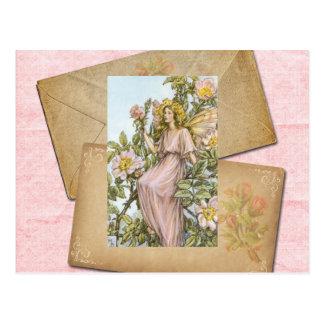 Carte Postale Sauvage Rose Fairy Card