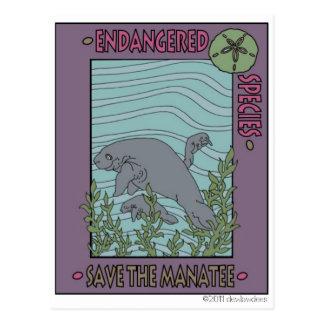 Carte Postale Sauvez le lamantin