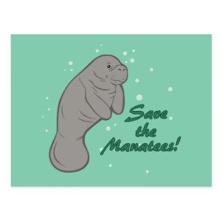 Carte Postale Sauvez les lamantins !