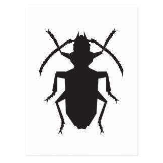 Carte Postale scarabée de longhorn