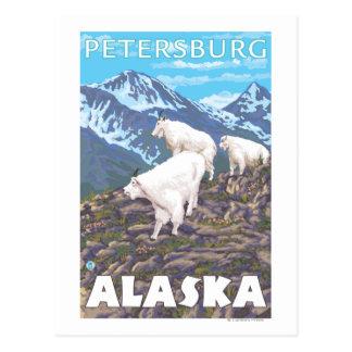 Carte Postale Scène de chèvres de montagne - Pétersbourg, Alaska