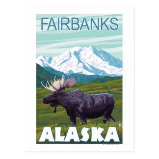 Carte Postale Scène d'orignaux - Fairbanks, Alaska