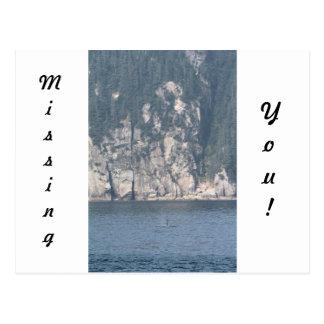 Carte Postale Scène solitaire d'orque