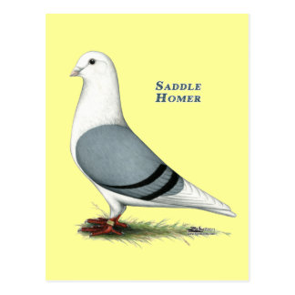 Carte Postale Selle bleue de Homer