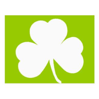 Carte Postale Shamrock irlandais
