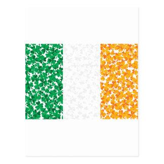 Carte Postale Shamrocks dans un drapeau