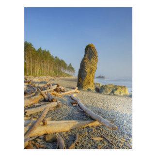 Carte Postale Shoreline et Seastacks, plage rouge, olympique