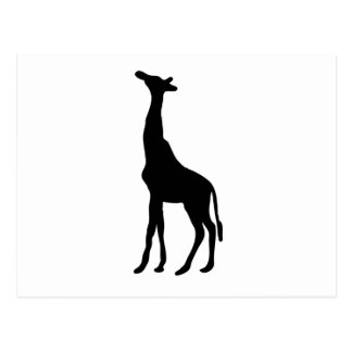 Carte Postale Silhouette de girafe