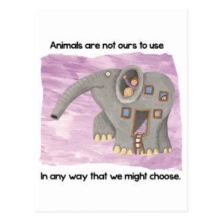 Carte Postale Soin au sujet des animaux !