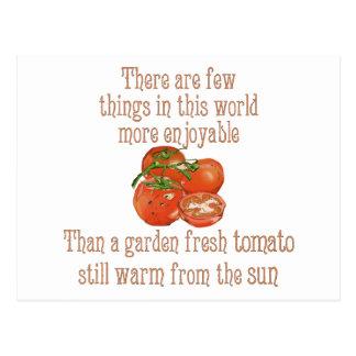 Carte Postale Sun a chauffé des tomates