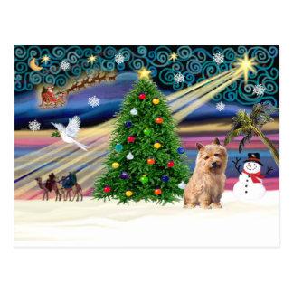 Carte Postale T2 de Noël Magie-Norfolk