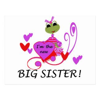 Carte Postale T-shirts et cadeaux de grande soeur de grenouille