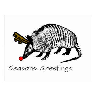 Carte Postale Tatou de Noël