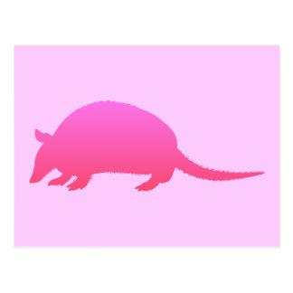 Carte Postale Tatou rose