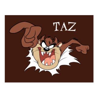 Carte Postale TAZ™ éclatant par la page