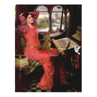 Carte Postale Teckel 1 - Madame de Shalotte