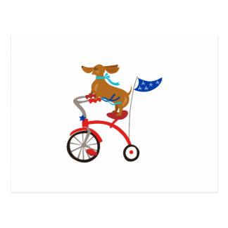 Carte Postale Teckel sur le vélo