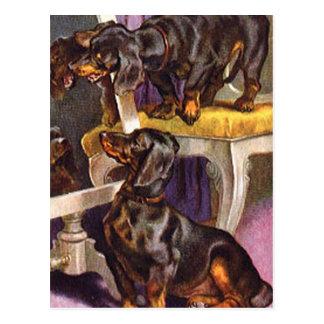 Carte Postale Teckels regardant en cadeaux vintages d'art de