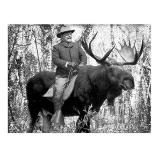 Carte Postale Teddy Roosevelt montant un orignal de Taureau