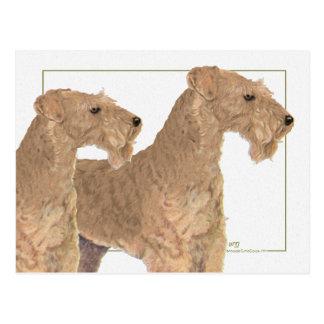 Carte Postale Terriers de région des lacs