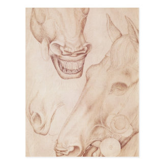 Carte Postale Têtes des chevaux, de l'album de Vallardi