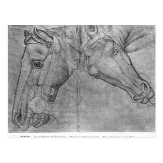 Carte Postale Têtes des chevaux, le de l'album de Vallardi