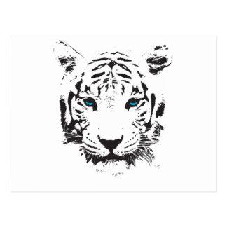 Carte Postale Tigre blanc avec des yeux bleus