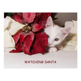 Carte postale timide d'humour de Père Noël de