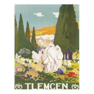 Carte Postale Tlemcen vintage Algérie